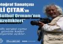 """""""BÜLBÜL ORMANININ GÜZELLİKLERİ"""""""